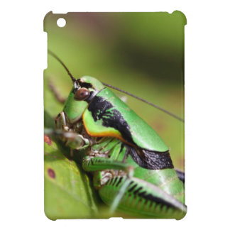 The katydid cricket Eupholidoptera chabrieri iPad Mini Cover