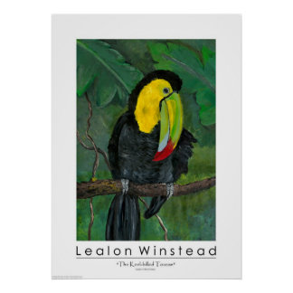 The Keel-billed Toucan Poster