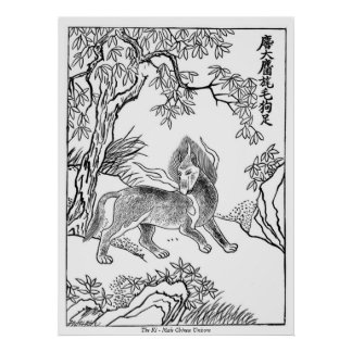 The Ki - Male Chinese Unicorn Poster