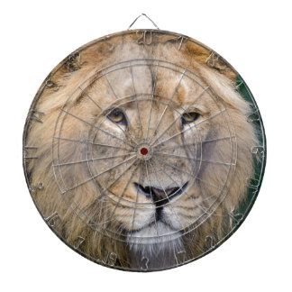the king dartboards