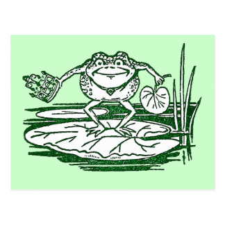 The King of the Bullfrogs Doffs His Crown Postcard