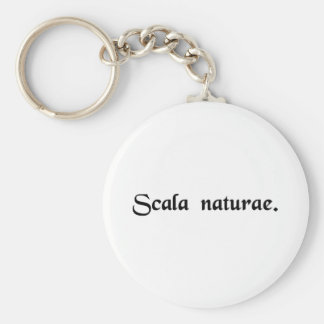 The ladder of nature. basic round button keychain