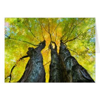 The Ladies dance, Fall card, autumn, tree Card