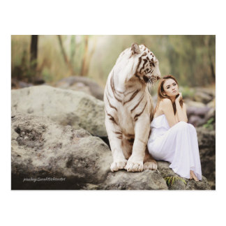 The Lady and the Tiger  -- Postcard