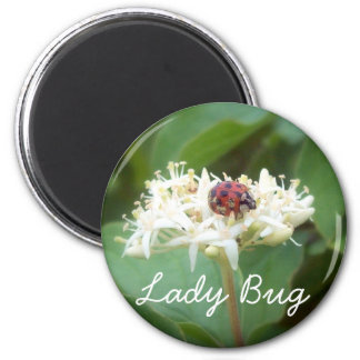 The LadyBug in White Flowers 2 Inch Round Magnet