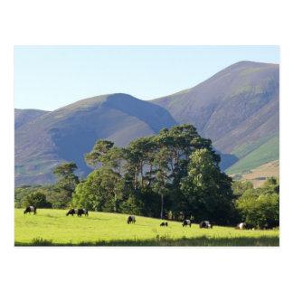 The Lake District-Keswick Postcard