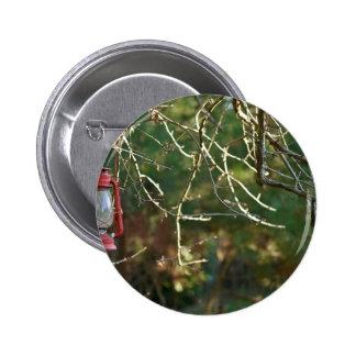 The Lantern Pinback Button