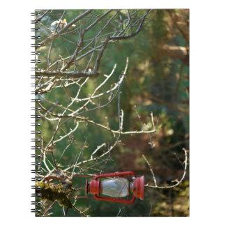 The Lantern Notebooks