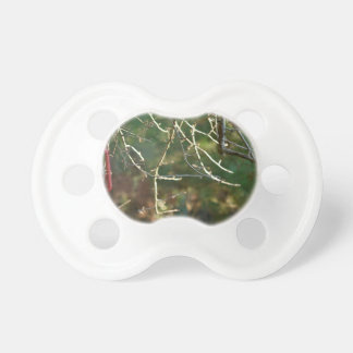 The Lantern Pacifiers