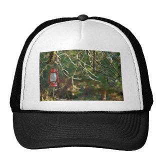 The Lantern Trucker Hats