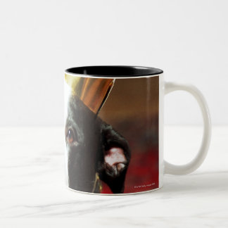 The latin name for all domestic dogs is Canis Two-Tone Coffee Mug