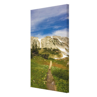 The Leading Trail Canvas Print
