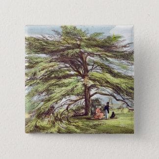 The Lebanon Cedar Tree in the Arboretum, Kew Garde 2 Inch Square Button