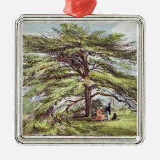 The Lebanon Cedar Tree in the Arboretum, Kew Garde Silver-Colored Square Ornament
