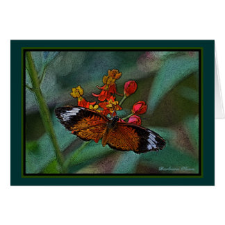 The Leopard Lacewing (Cethosia cyane) Butterfly Card