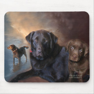 The Life Of A Lab Mousepad