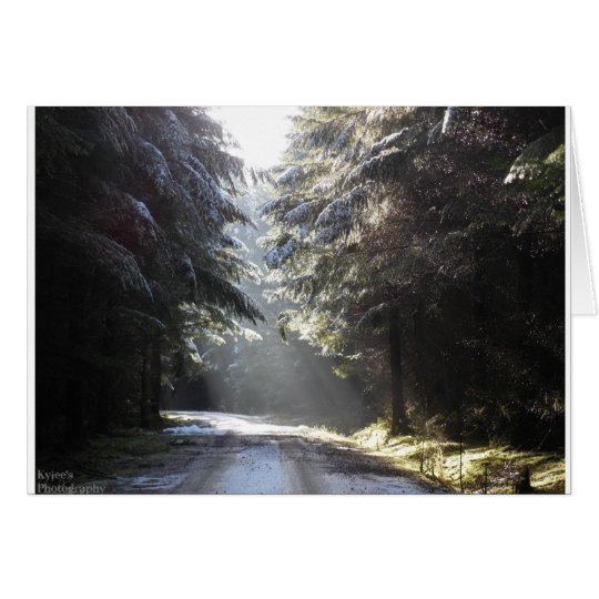 The light in the forest card