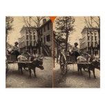 The Lightning Express, Savannah, Ga c. 1886 Post Card