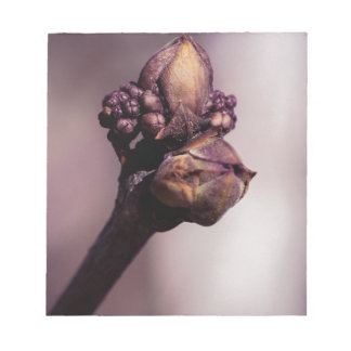The Lilac Bud Notepad