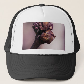 The Lilac Bud Trucker Hat