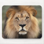 The Lion Mouse Pad