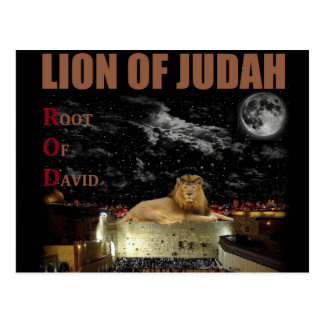 The Lion Of Judah On The Western Wall Postcard