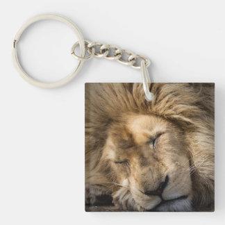 The Lion Sleeps tonight Keychain