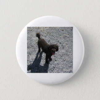 The Little Black Poodle 2 Inch Round Button