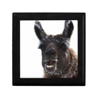 The Llama Says... Gift Box