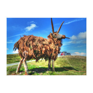 The Loaghtan 2 Canvas Print