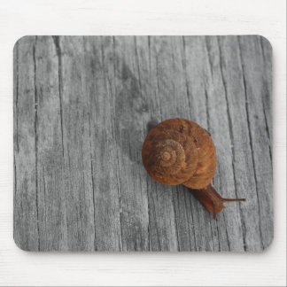 The Lonely Snail Mousepad