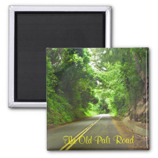 The long road home, The Old Pali Road magnet