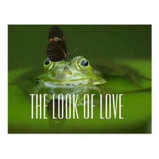 The look of love frog postcard