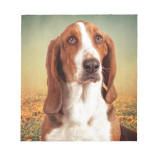 The Loveable Basset Hound Notepad