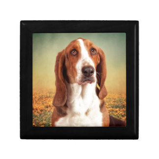 The Loveable Basset Hound Trinket Boxes