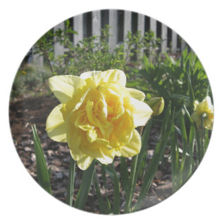 The Lovely Daffodil Plate