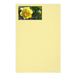 The Lovely Daffodil Stationary Stationery