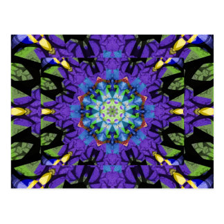 The magic kaleidoscope postcard