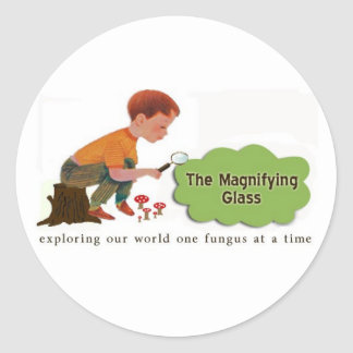 The Magnifying Glass Stickers