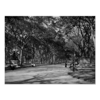 The Mall in Central Park in New York City Poster