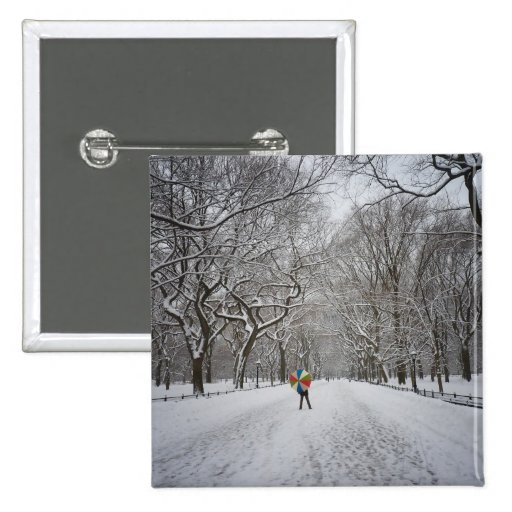 The Mall in Winter, Central Park, New York City Pinback Button