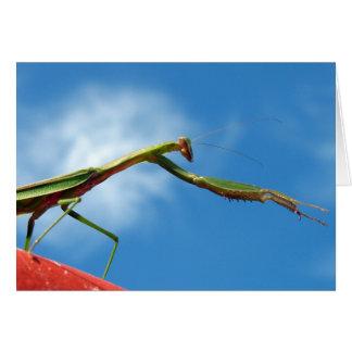 The Mantis Card