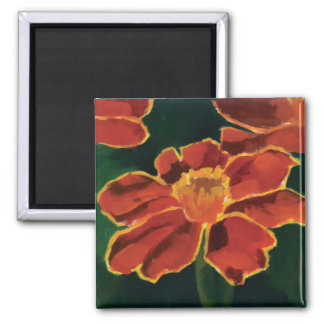 The Marigold Magnet
