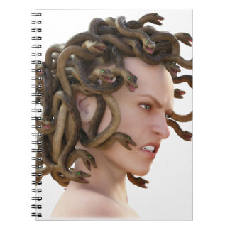 The Medusa Notebooks