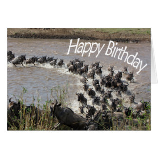 The Migration (Wildebeest River Crossing) - HB Card