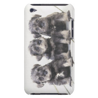 The Miniature Schnauzer is a breed of small dog iPod Touch Cover