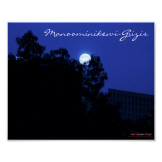 The moon of ricing occurring in Aug or Sept Poster