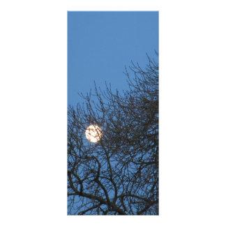 The moon rack card