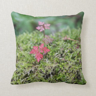 The Moss Pillow