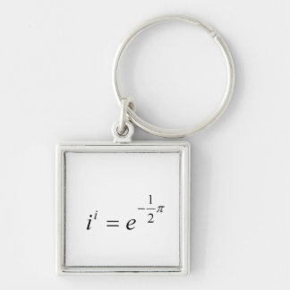 The most beautiful Math Equation Keychain